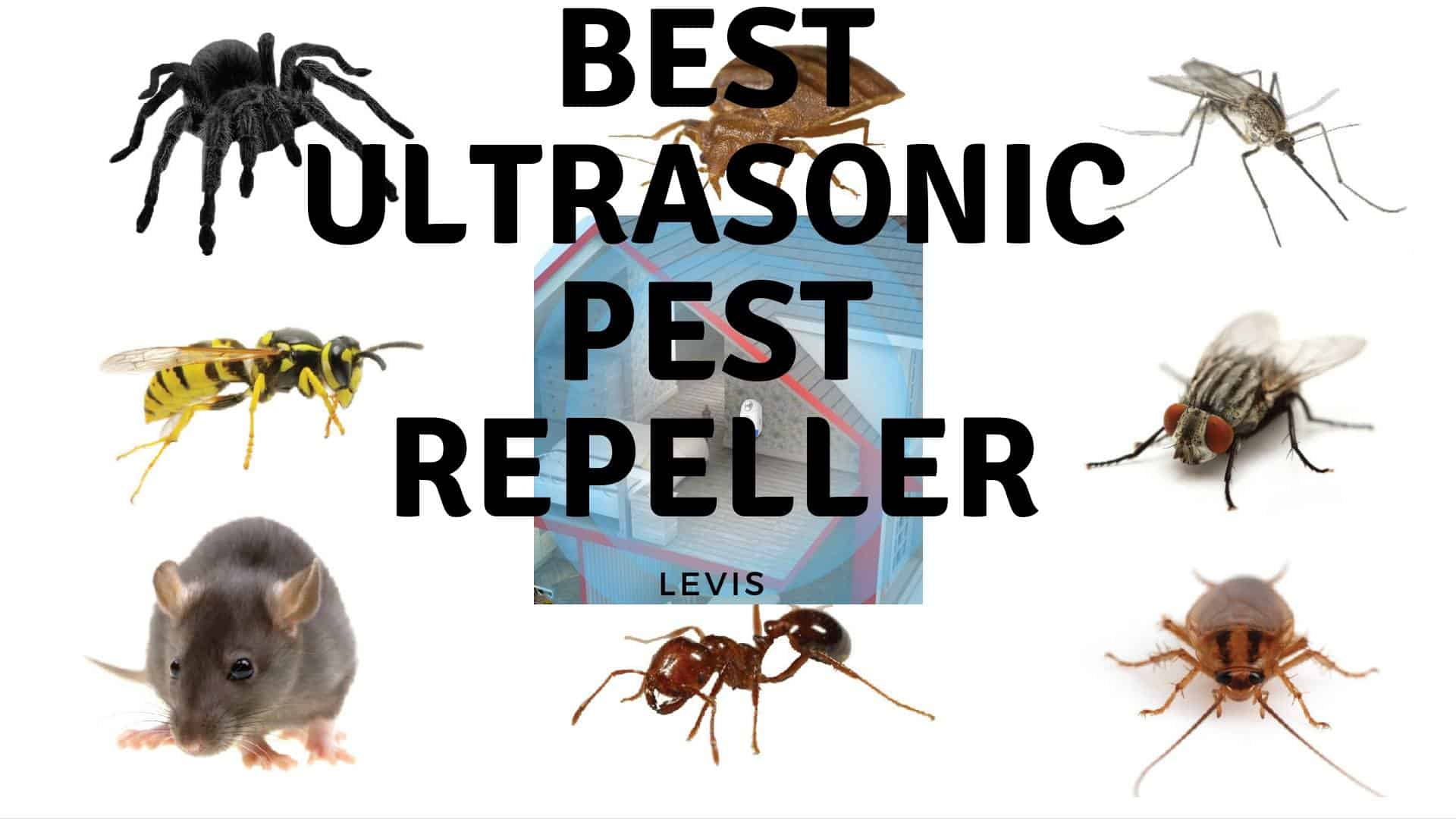 Best Ultrasonic Pest Repeller