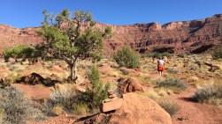 Einstieg in den Trail