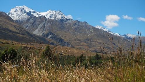 Sommer in Neuseeland