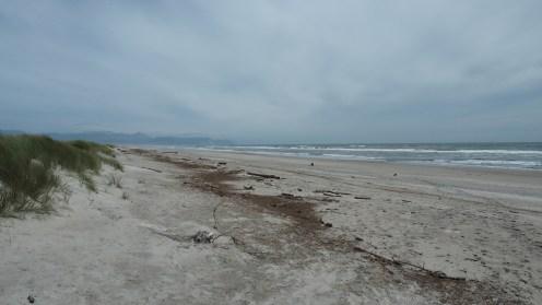 Am Strand von Karamea