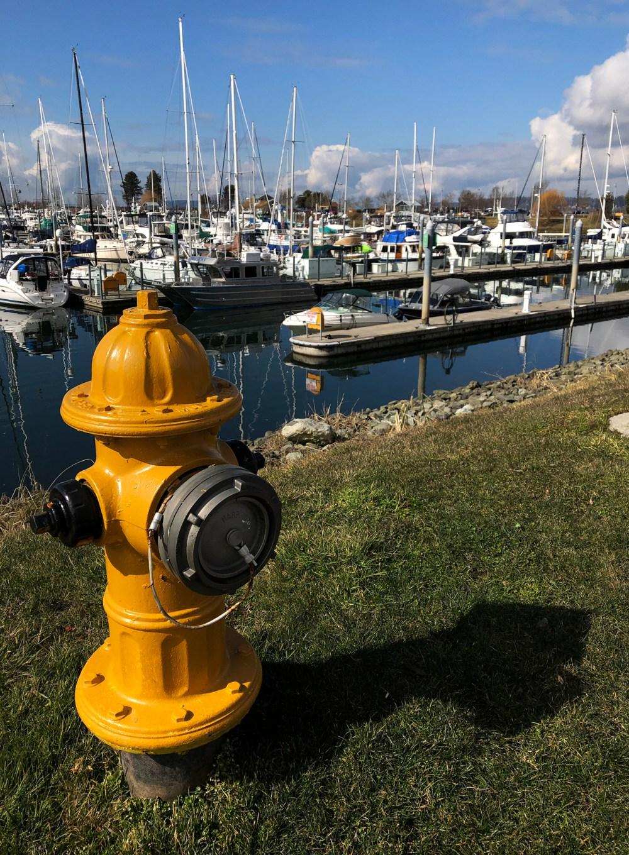 Am Hafen von Everett