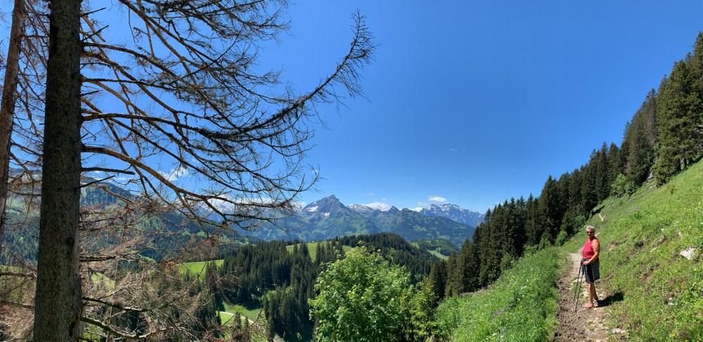 Unterwegs-in-Richtung-Alpwirtschaft-Furgglen
