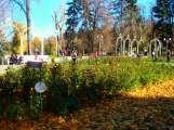 Gorky Park - orangery