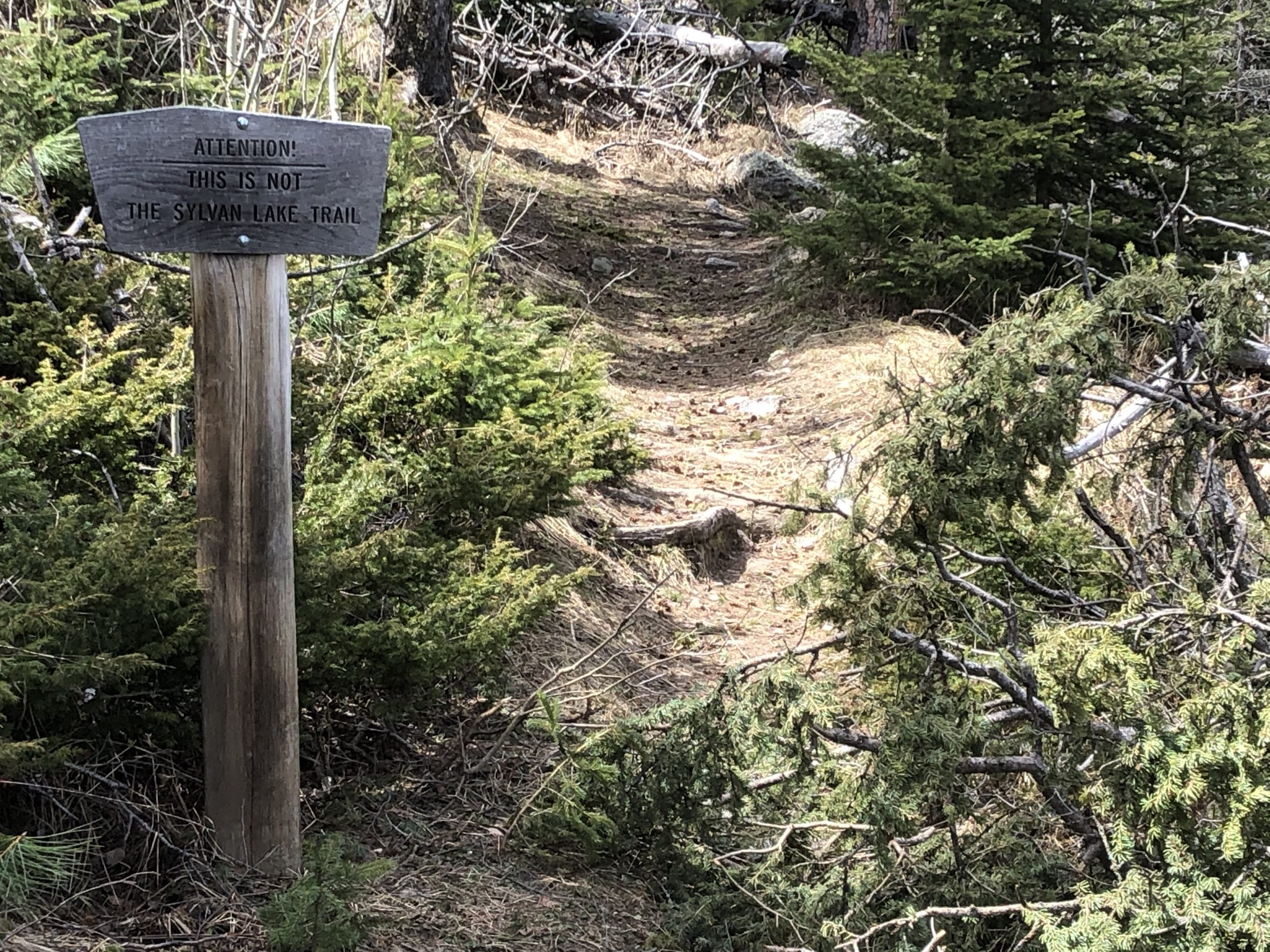 A wooden sign indicating the path beyond is not the Sylvan Lake Trail