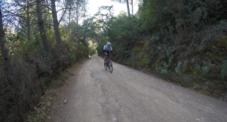 Gravel bike Córdoba.