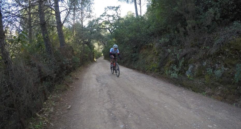 Gravel bike Córdoba.