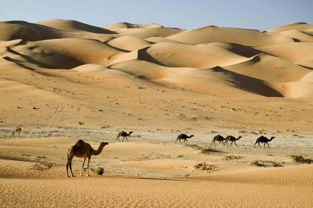 Resultado de imagem para Deserto da Arábia