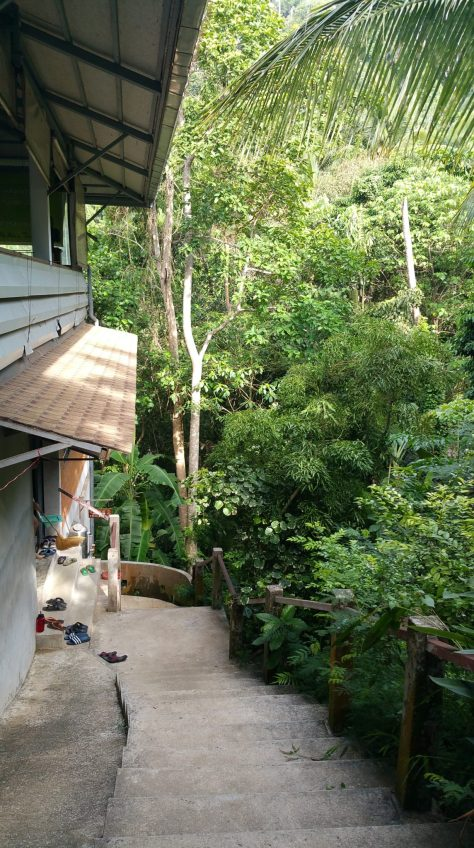 The steep pathway from the men's dormitory up to the meditation hall. Much easier to see in the light of day.
