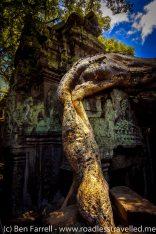 Angkor-19