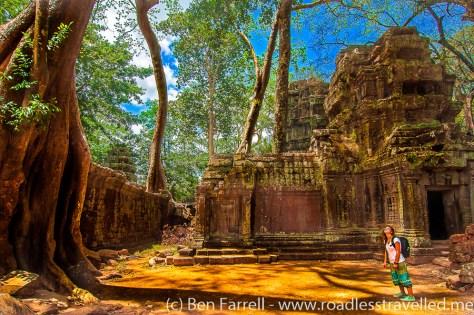 Tomb Raider Temple-
