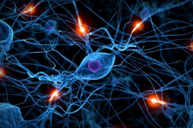 Our deep seated 'fight or flight' neural pathways are by no means dormant.