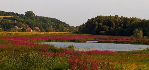 nationalpark-unteres-oderta