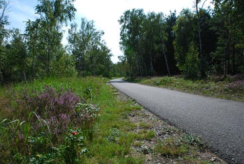 spreeradweg-bei-spremberg