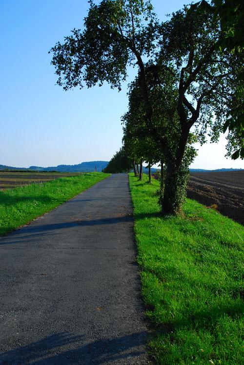 spreeradweg-lausitzer-bergl