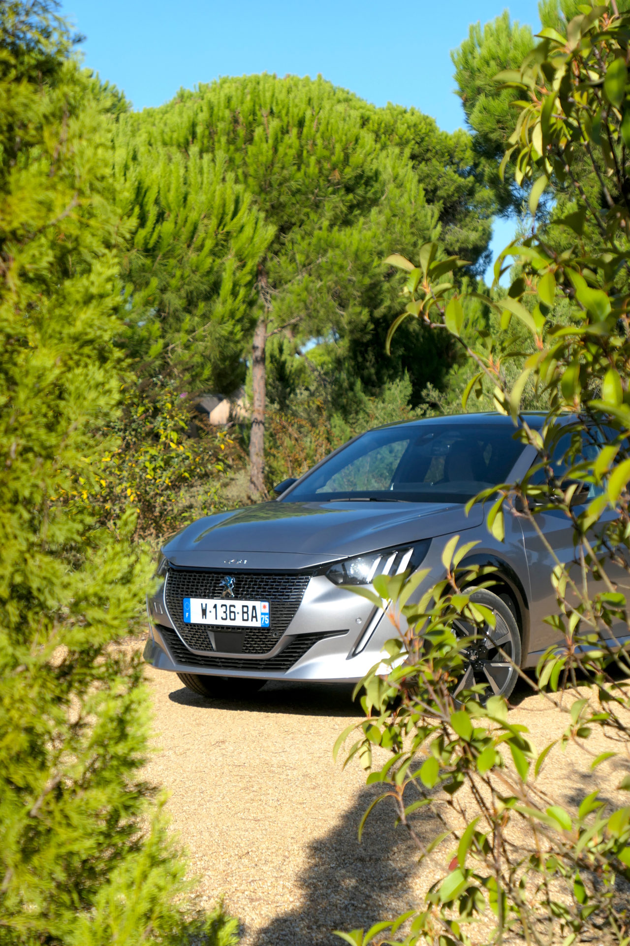 roadrugcars road rug cars peugeot 208 e 208 into the wild