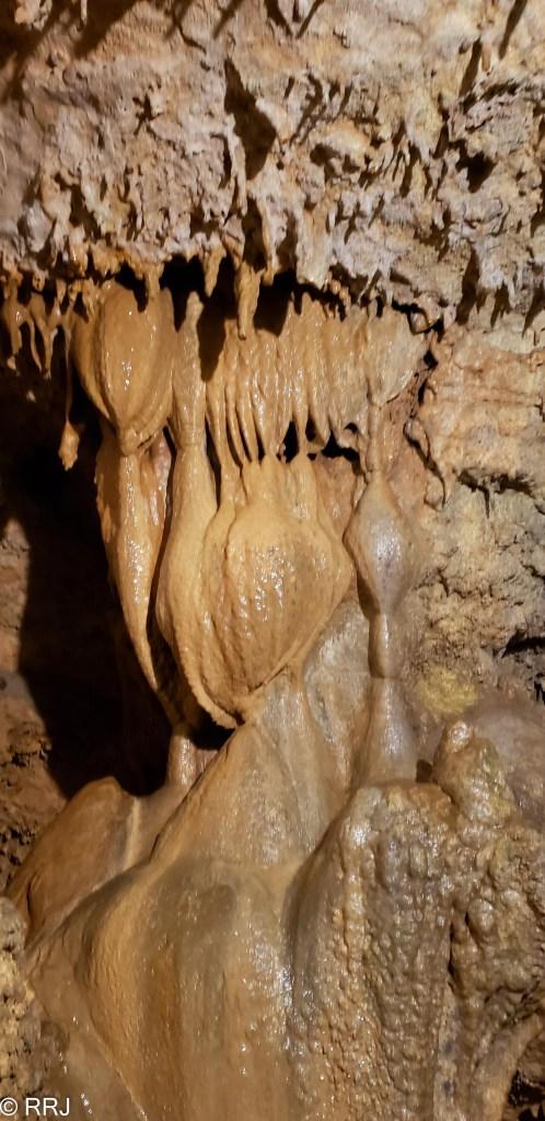 Rickwood Caverns stalactite cave bacon