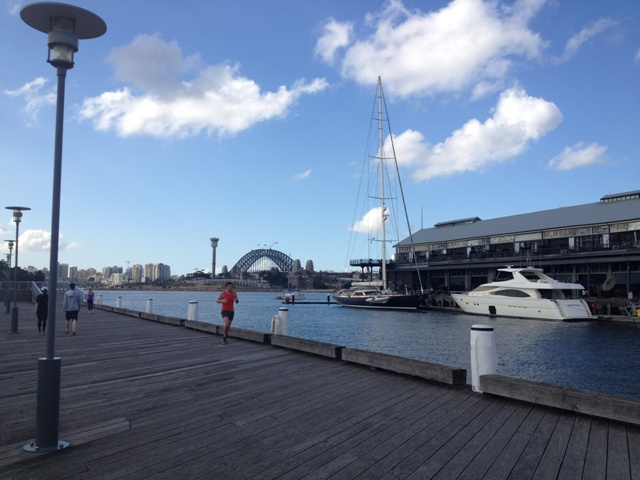 Pyrmont boats
