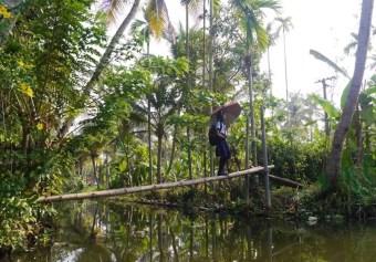 Südindien, Kerala Backwaters