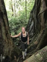 Sumatra Dschungel Wanderung