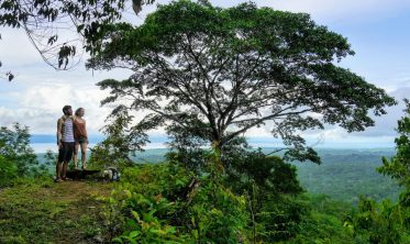 Bolita Rainforest - Corcovado Nationalpark