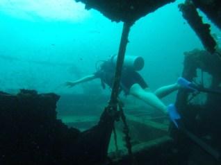 Tauchen in einem Schiffswrack, Bocas del Toro