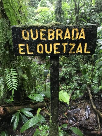 Quebrada el Quetzal im Santa Elena Park