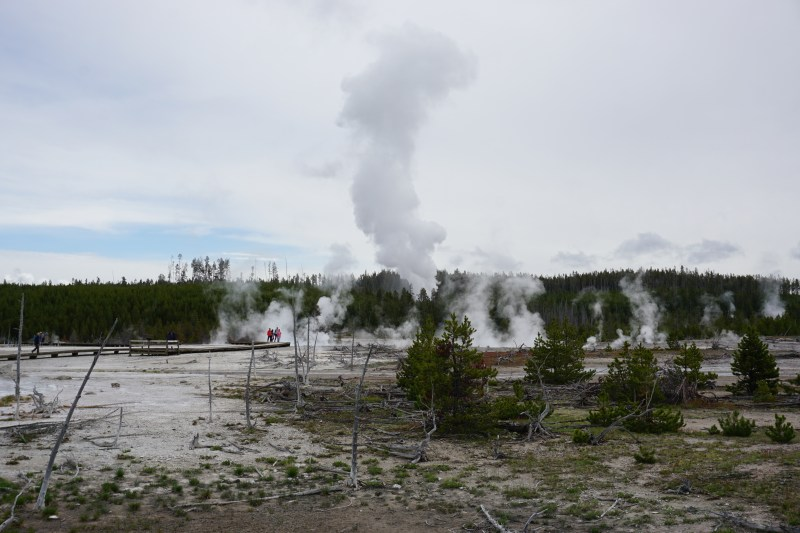 Norris Geyser Basin Steamboat eruption aftermath