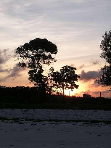 kenya-beach-sunset-by-dafyddaptrnce-flickr-dot-com.jpg