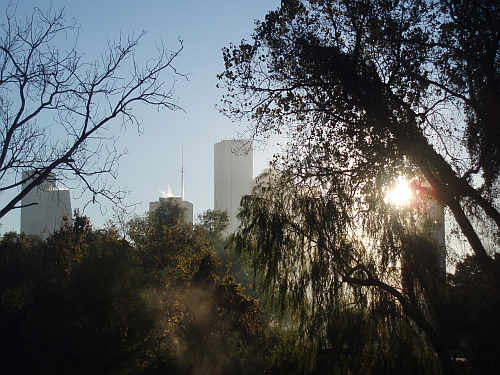 houston-skyline-above-buffalo-bayou-december-2007-by-roadsofstone.jpg