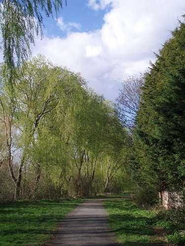 hogsmill-valley-walk-ewell-surrey-england-by-roadsofstone