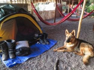 Είχαμε προσωπικό φύλακα στο camping της Pica