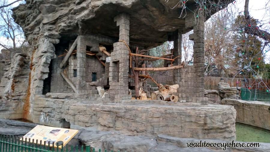 Bear Mountain at the Denver Zoo