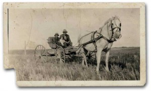 horse and wagon, 1920s, Yorkton, Saskatchewan