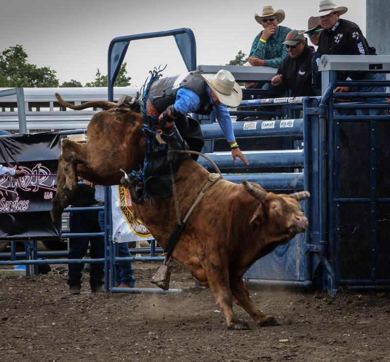 powwow rodeo