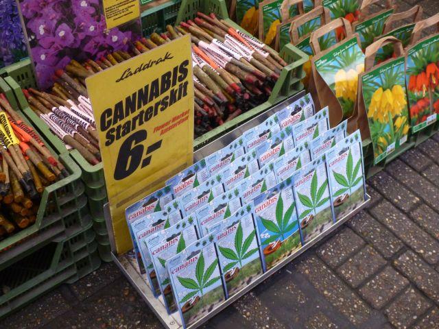 Marché aux fleurs - Amsterdam