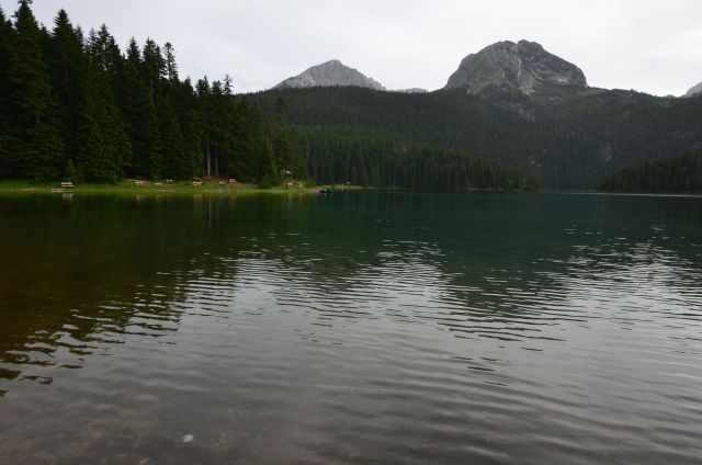 Lac noir (Crno jezero) - Monténégro