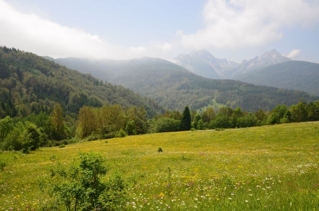 Environs d'Andrijevica - Monténégro