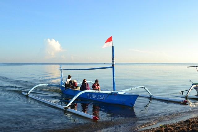Morning dolphin excursion in Lovina, Bali