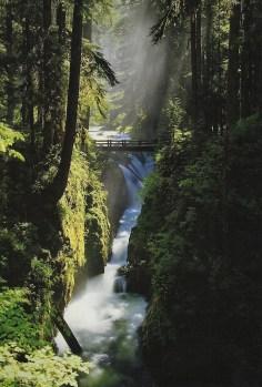 Sol Duc Falls Cover
