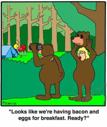 animals-camping-camper-breakfast-cooked_breakfast-bear-awhn81_low.jpg