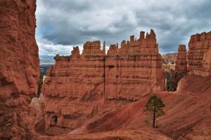 Hoodoo Wall Bryce Canyon