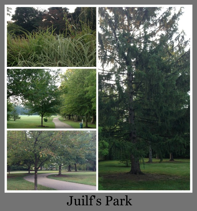 30 Days of Trails in Cincinnati: Juilf's Park