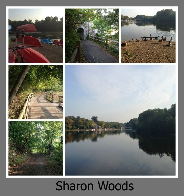 30 Days of Trails in Cincinnati: Sharon Woods