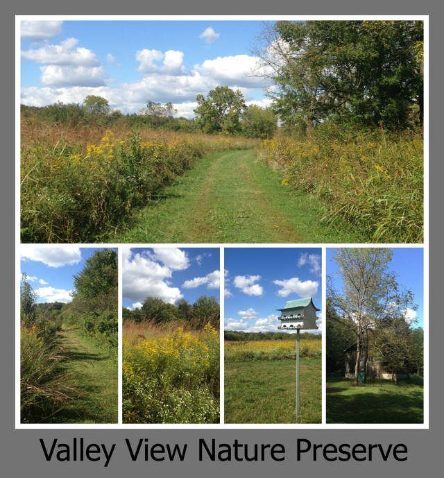 30 Days of Trails in Cincinnati: Valley View Nature Preserve