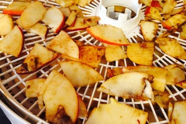 Backpacking Recipes Dehydrated Cinnamon Apples