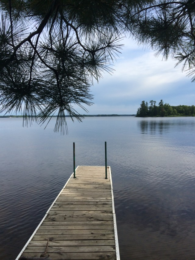 Woodenfrog State Forest in Voyageurs National Park