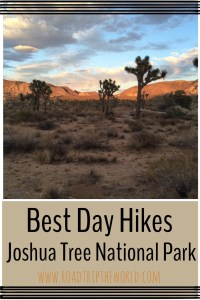 Best day hikes Joshua Tree National Park