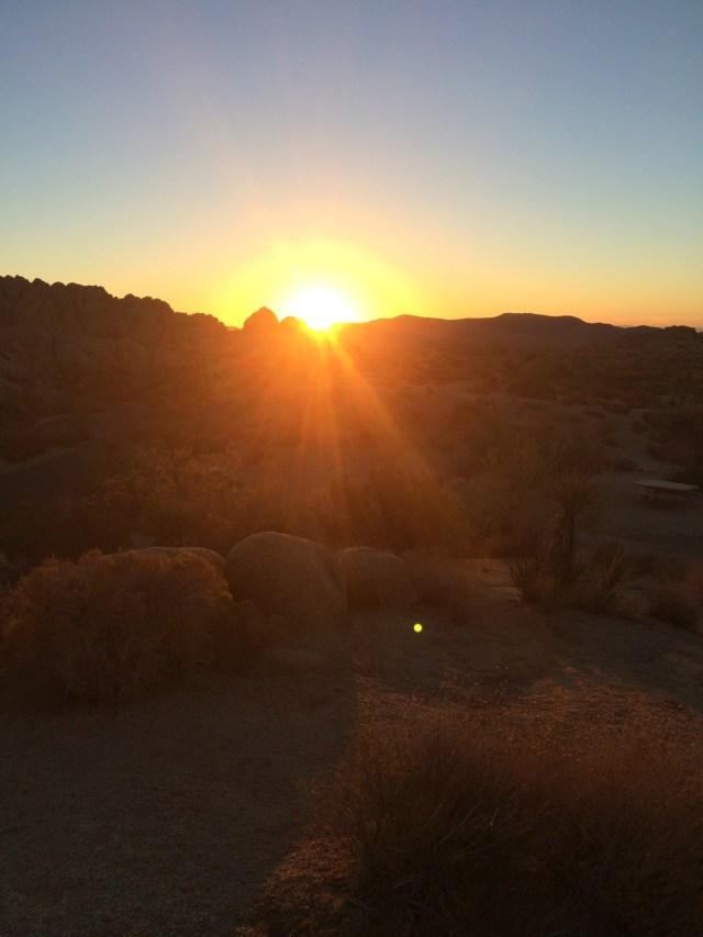 Jumbo Rocks Campground