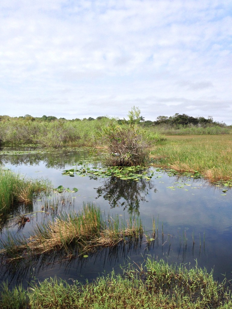 Camping in Everglades National Park