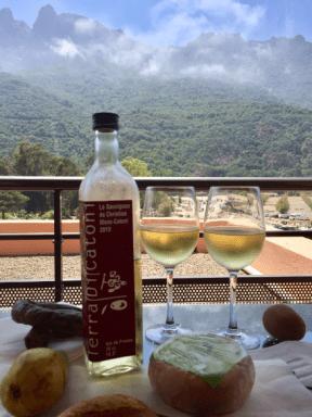 Terra di Catoni wine w mountains